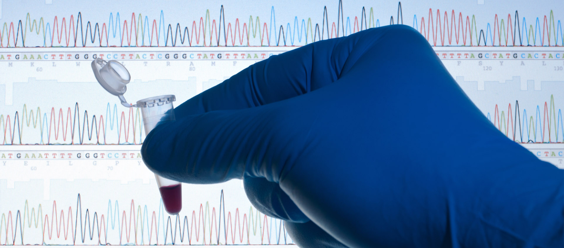 Biology / DNA